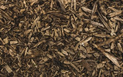 FREE Wood Chips at the Highway Garage