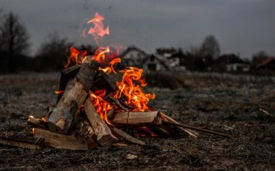 NYSDEC Issues Statewide Brush Burning Ban Through 5/14/19