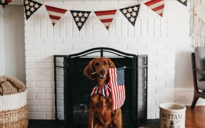 All Town Offices Will Be Closed On 7/4/19 (July 4th Holiday)